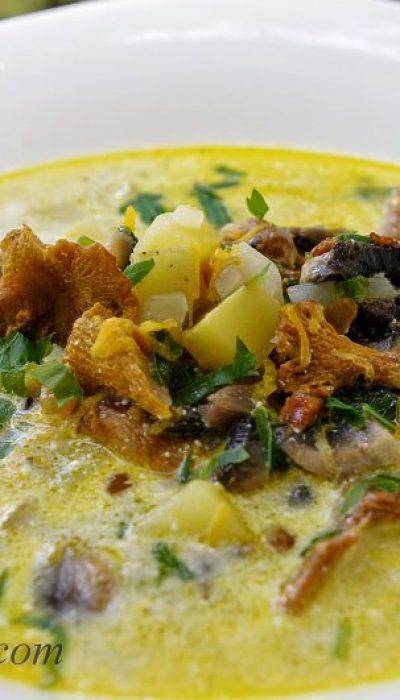 Pievagrybių ir voveraičių sriuba